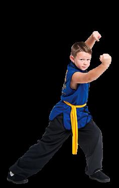 Junior Kung Fu