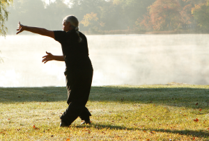 Tai Chi Practice to discover Chi